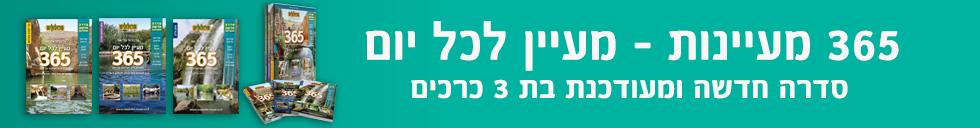 banner-77