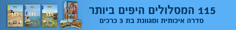 banner-32