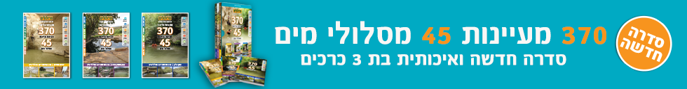 banner-54