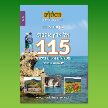 תמונה files/catalog/source/115_350_10.png