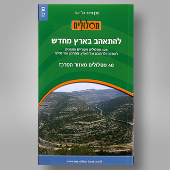 תמונה files/catalog/source/12maslulim350mercaz.jpg
