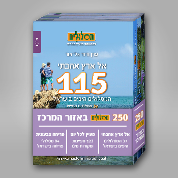 תמונה files/catalog/source/mercaz2_350x350.jpg